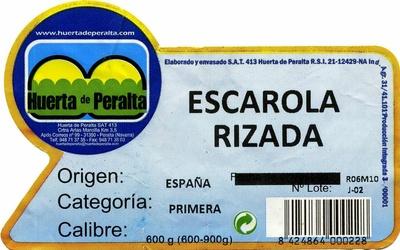 Escarola rizada - Ingredientes