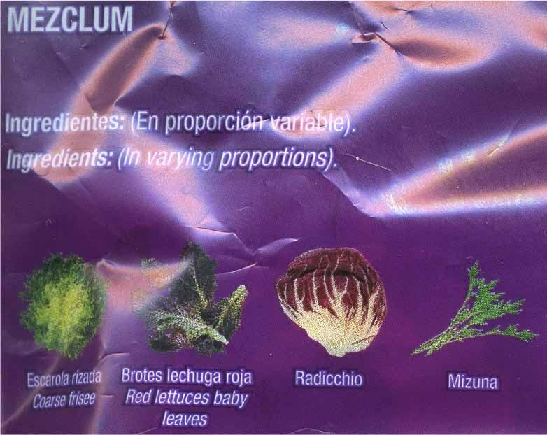 Brotes de lechuga Roja - Ingredientes - es