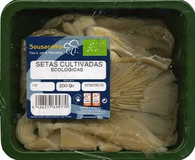 """Setas de ostra ecológicas """"Sousacamp"""" - Producte - es"""