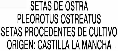 Setas de ostra - Ingredientes
