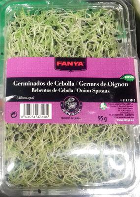 Germinados de cebolla - Producto - es