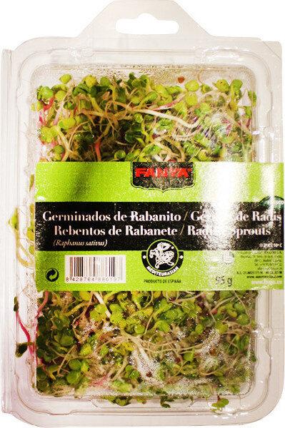 Brotes de rabanito japonés tarrina - Producto - es