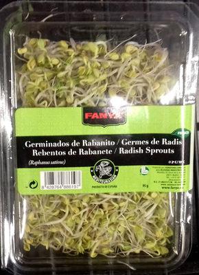 Brotes de rabanito japonés tarrina