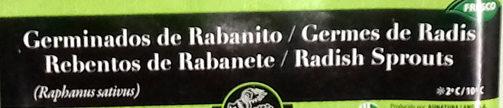 Brotes de rabanito japonés tarrina - Ingredientes - es