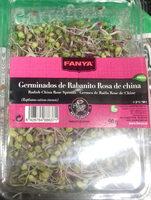 Germinados de Rabanito Rosa de China - Producto