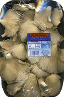 """Setas de ostra """"Hongos de la Jara"""" (400 g) - Producto - es"""