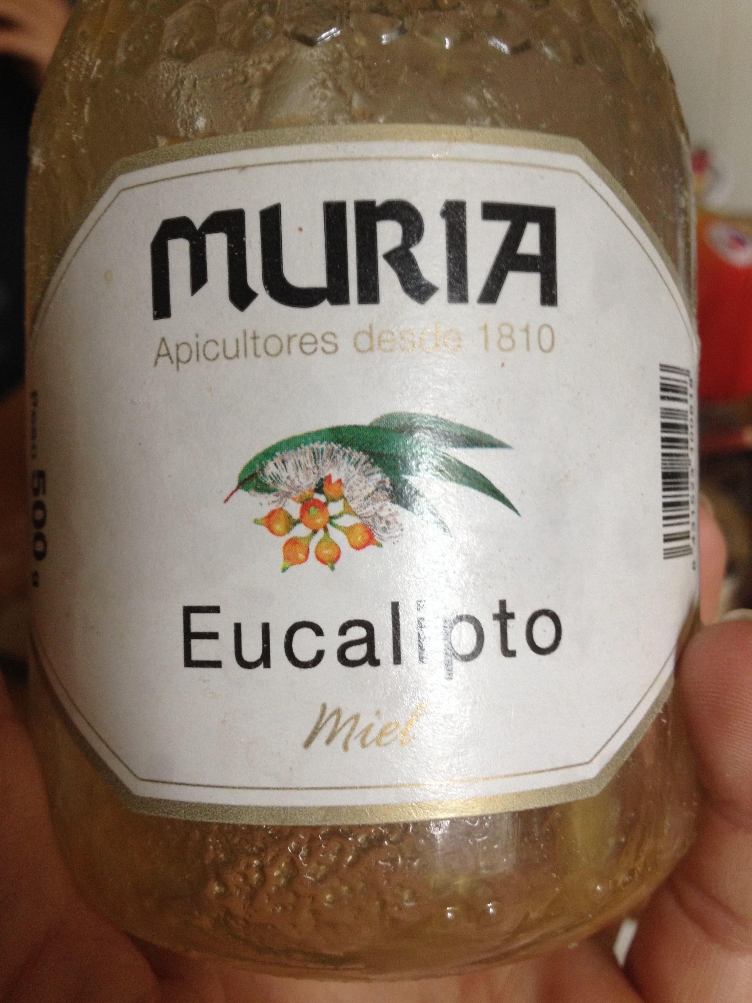 Miel Eucalipto Murita - Produit
