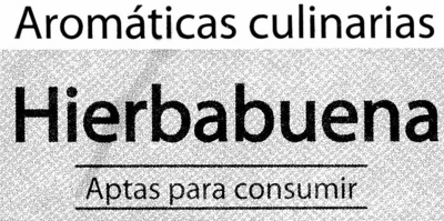 Maceta de hierbabuena - Ingredientes