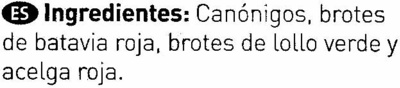 Ensalada de brotes tiernos - Ingredientes - es