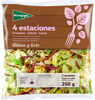 Ensalada 4 estaciones - Product