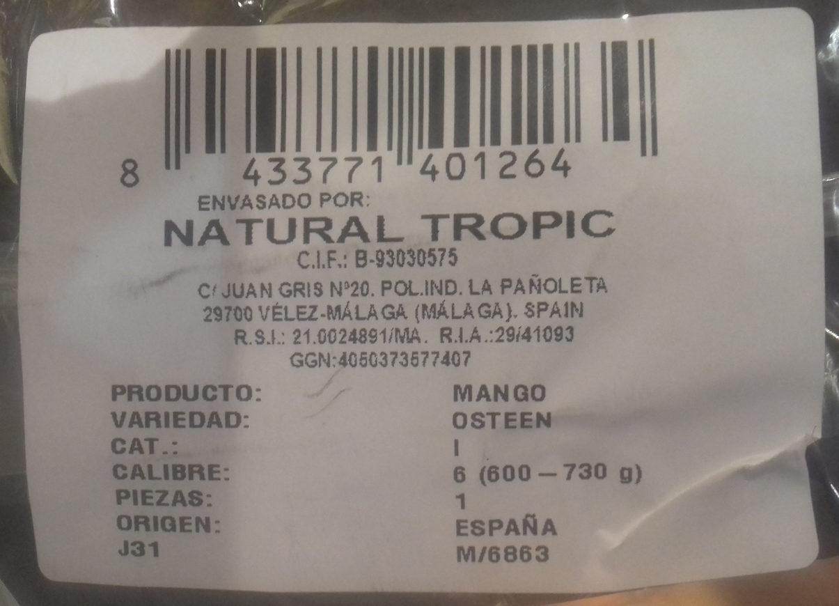 Mango - Ingredientes