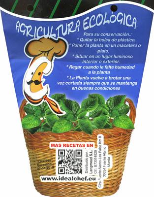 Maceta de romero - Información nutricional