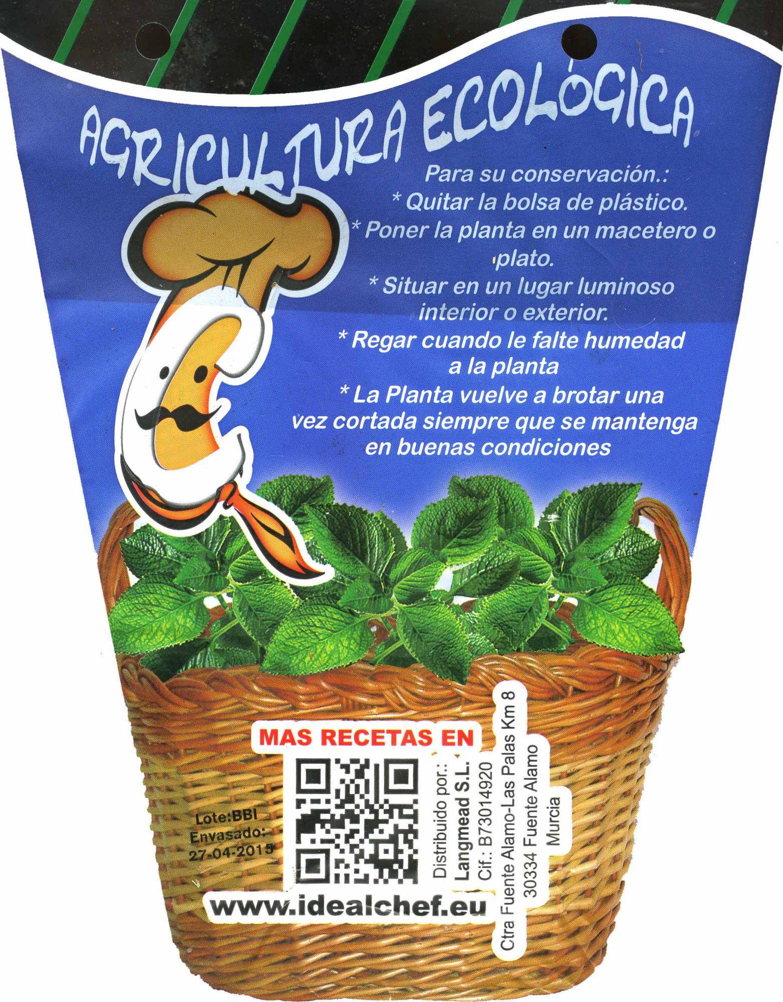 Maceta de romero - Informació nutricional