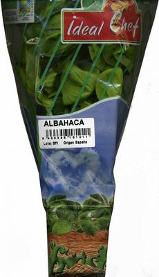 Maceta de albahaca - Producte