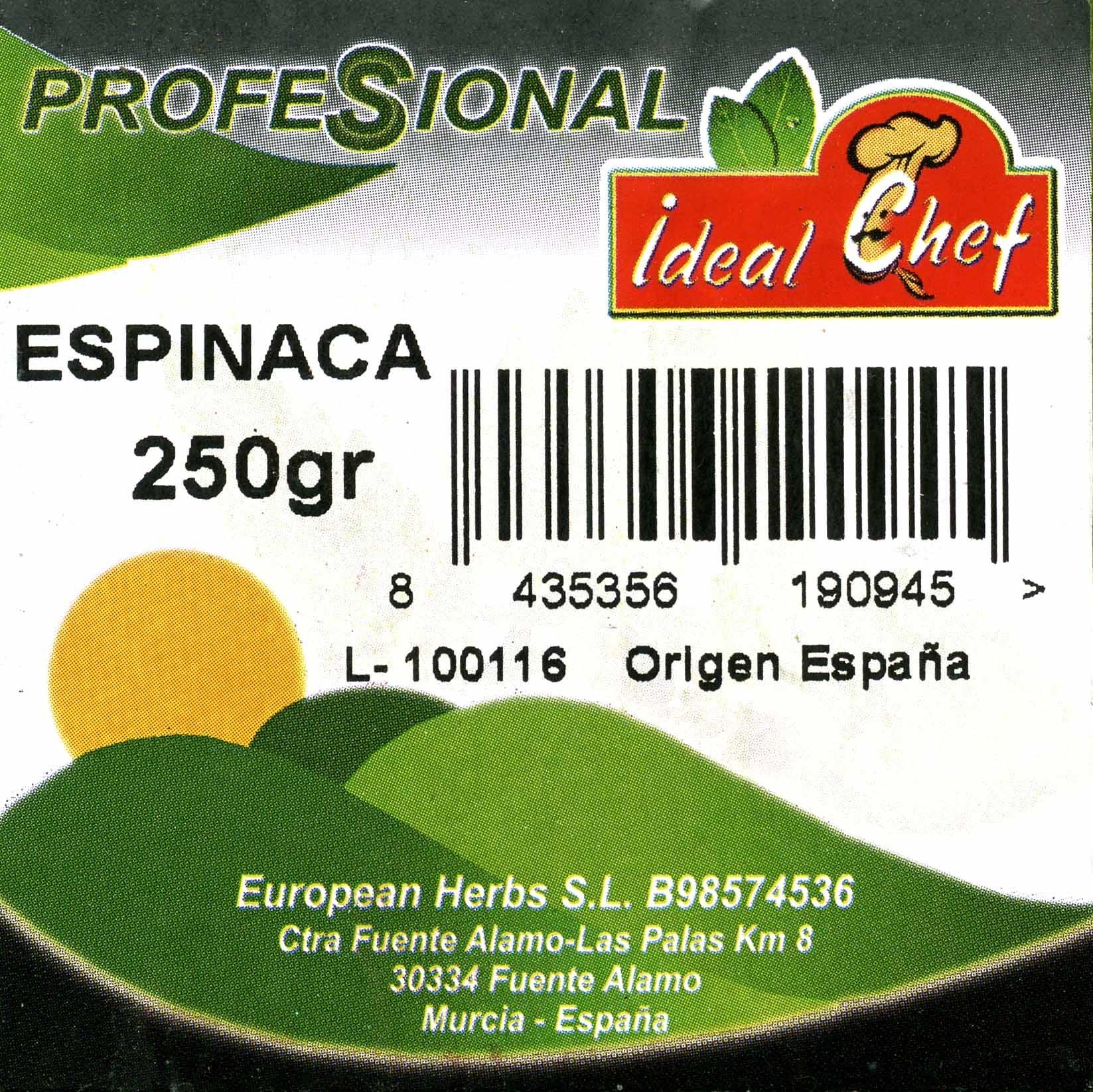 Espinacas - Ingrédients - es