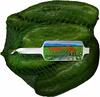 Pimientos verdes tipo italiano - Producto