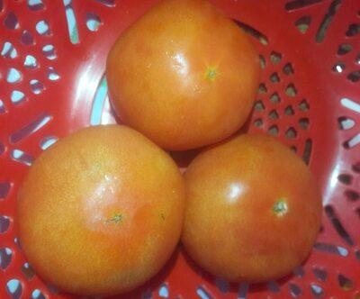 Tomates - Product - es