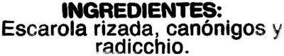 Ensalada Variada - Ingrediënten - es