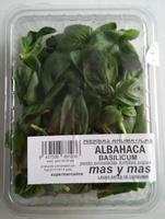 Albahaca fresca - Producto
