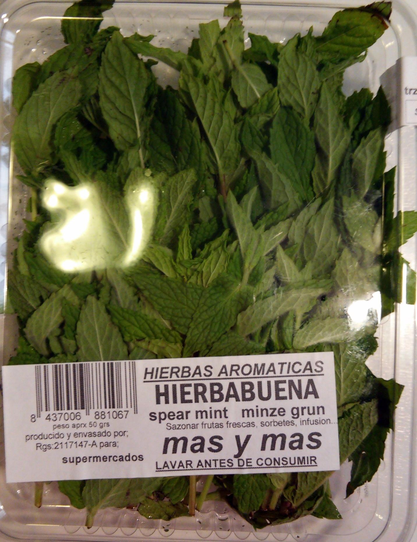 Hierbabuena fresca - Producto