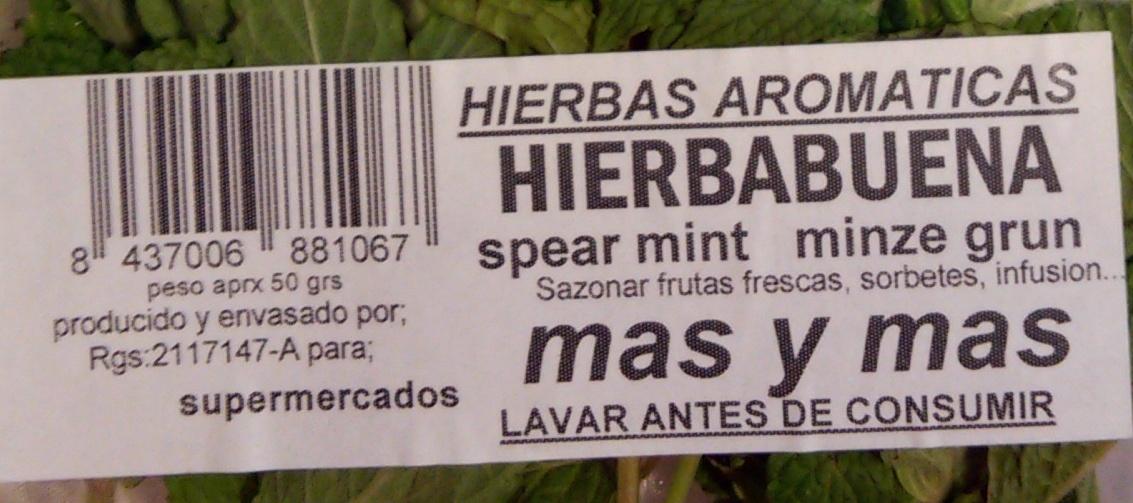 Hierbabuena fresca - Ingredientes