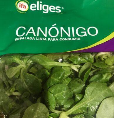 Canonigo - 4