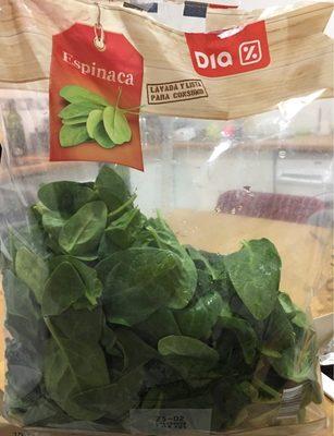 Espinaca - Produit - fr