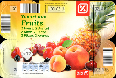 Yaourts aux Fruits (12 pots) - Product - fr
