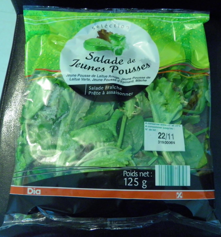 Salade de Jeunes Pousses - Produit