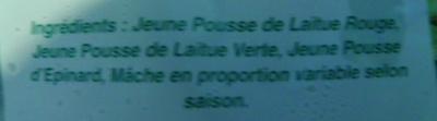 Salade de Jeunes Pousses - Ingrédients - fr