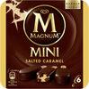 Magnum Glace Bâtonnet Mini Caramel Salé x6 - Product