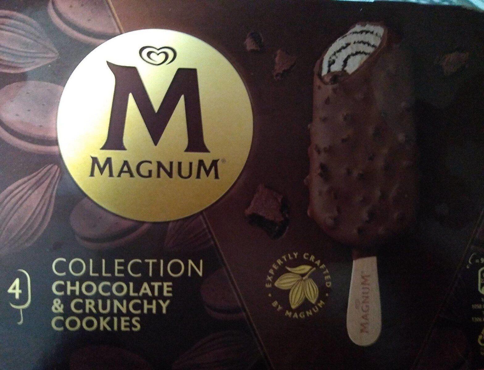 Magnum - Produit - fr