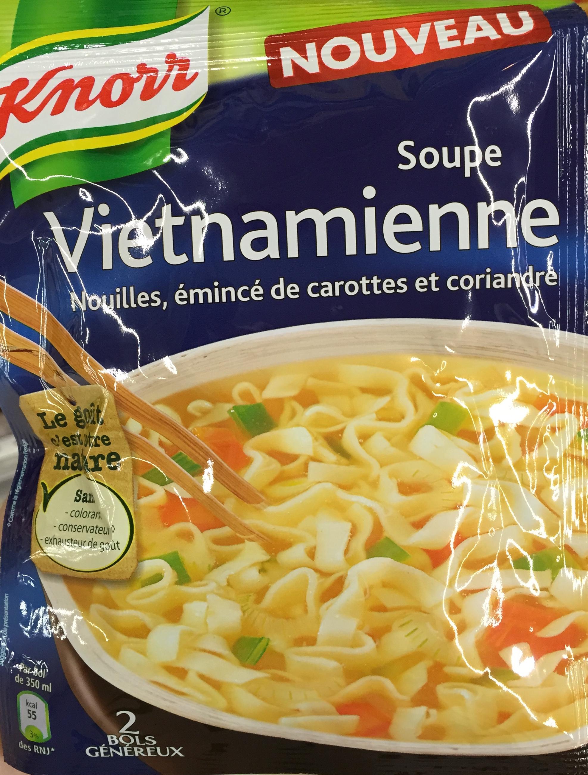 Soupe Vietnamienne Nouilles, émincé de carotte et coriandre - Product
