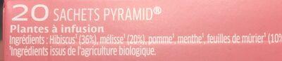 Mon infusion Bio Detox - Ingredients - fr