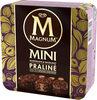 Mini Batonnet Glace Chocolat Praline x6 330 ml - Producto