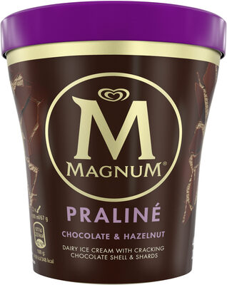 Praliné Chocolate & Hazelnut - Product - fr