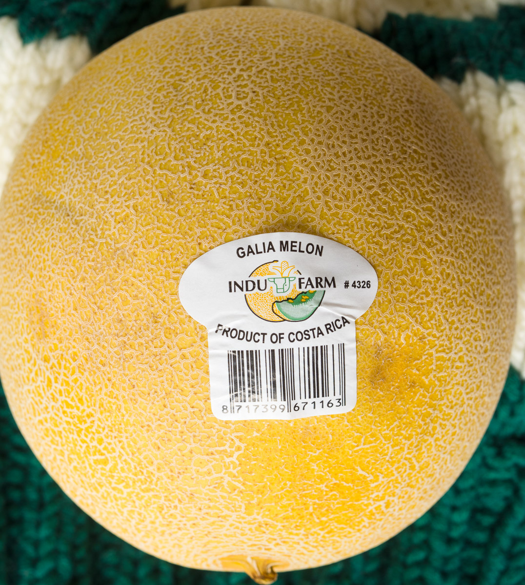 Galia Melon - Produit