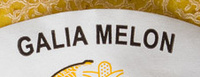 Galia Melon - Ingrédients