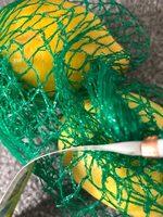 Lemons - Product - en