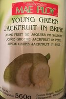Junge Grüne Jackfruit In Sole - Green Jackfruit - 560 GR. - Product - fr