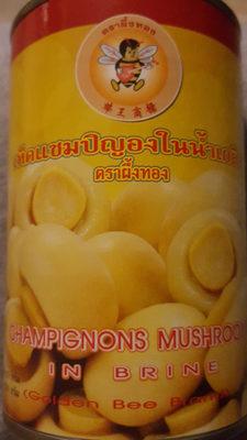 Champignons mushroom - Produit