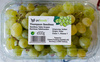 Thompson Seedless - Product