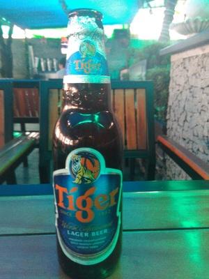 Lager beer - Sản phẩm - en