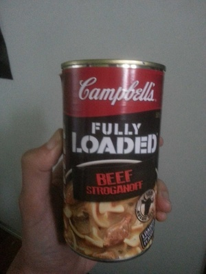 Fully Loaded Beef Stroganoff - Product