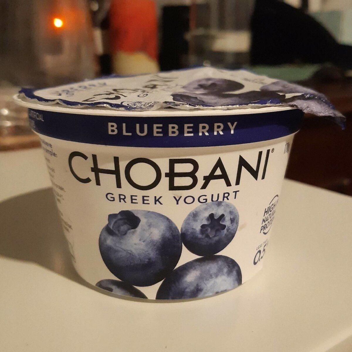 Blueberry Greek Yogurt - Product - en