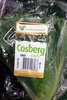Cosberg Lettuce - Product