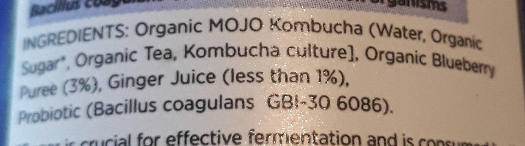 Kombucha Blueberry and Ginger - Ingredients - en