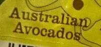 Australian Avocado - Ingredients