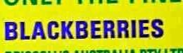 Blackberries - Ingrédients - en