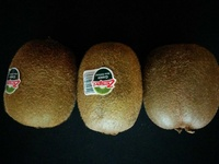 Kiwi - Produit - de